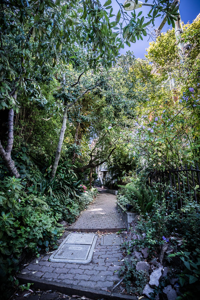 Secret stairs and special places on Russian Hill
